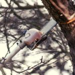 Top 5 Best Pole Saws for Pruning (Commercial & Home Uses) 2021 Reviews